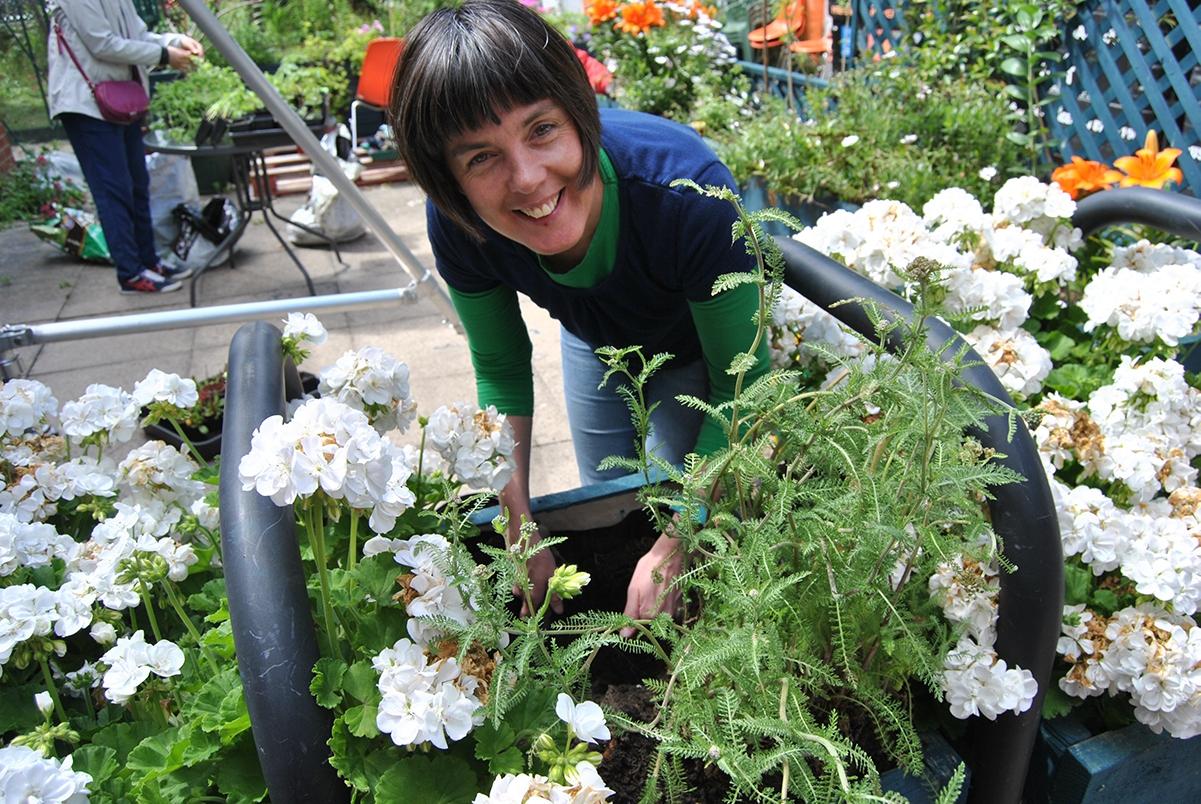 Catherine-planting-15th-June