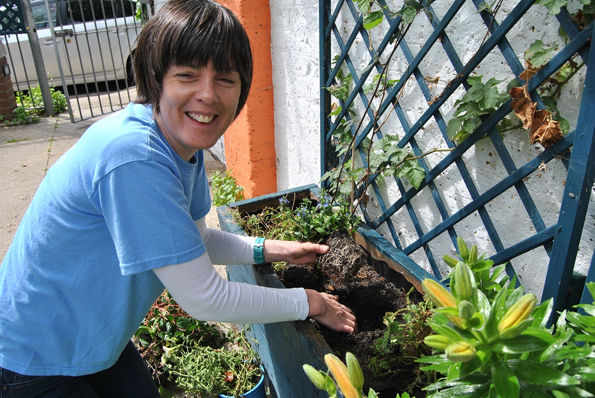 Catherine-planting