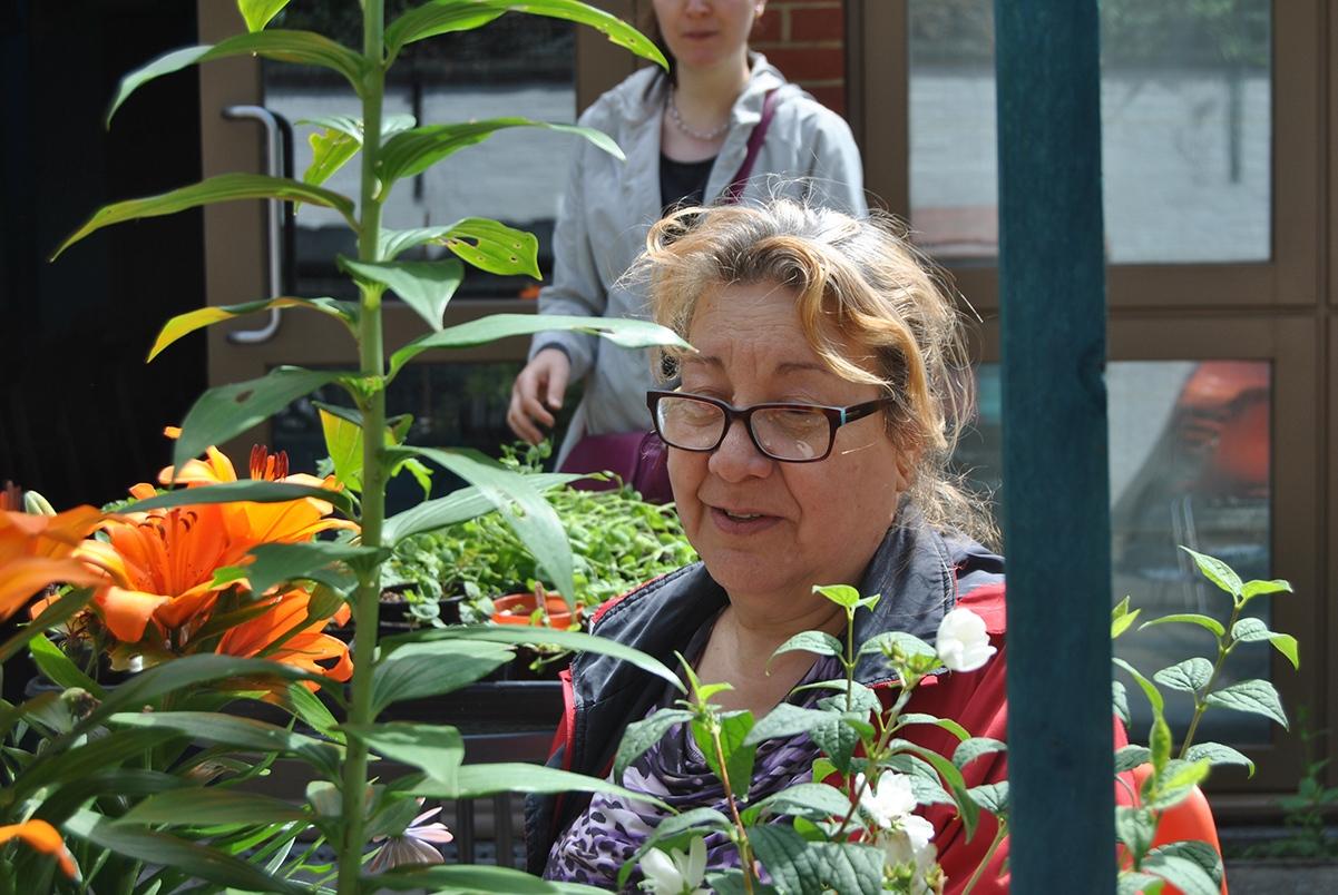 Soraya-planting-15th-June